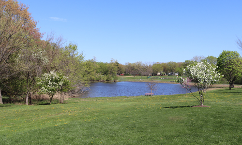 Community Park pond