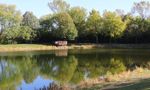 Pond at Hanrahan