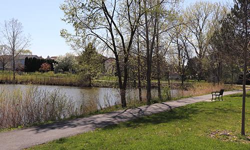 wetlands at Cardinal Terrace